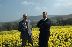 Alzheimer's disease treatment daffodils