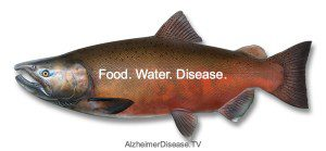 food and water contamination and disease